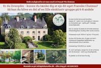 Unik investering i Fransk vin slot søger investor